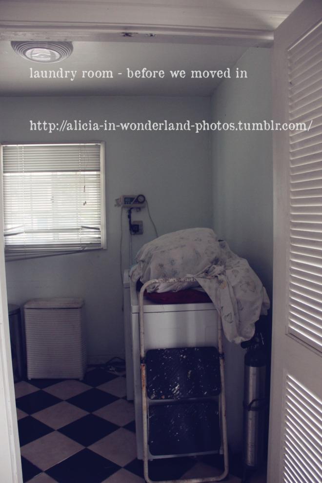 tumblr_m33yvr0t7A1qh2ttzo9_1280