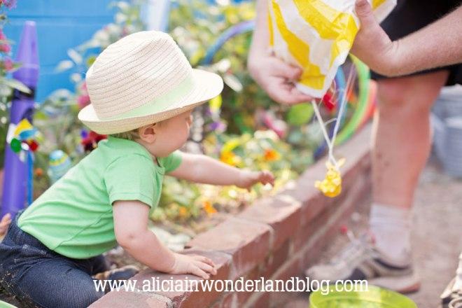 aliciainwonderlandblog.com