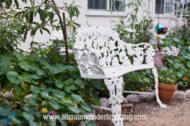 aliciainwonderlandblog33