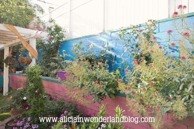 aliciainwonderlandblog35
