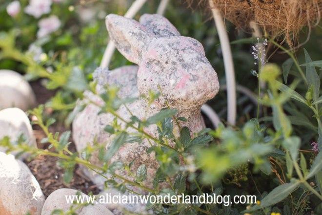 aliciainwonderlandblog45