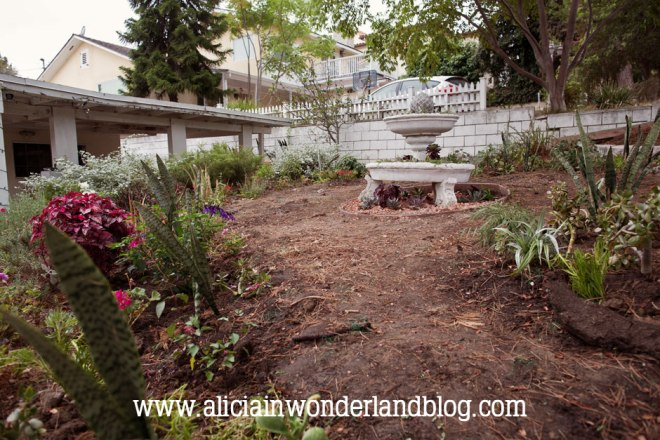 aliciainwonderlandblog9